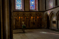 Lincoln Cathedral (17 of 29) - 5751